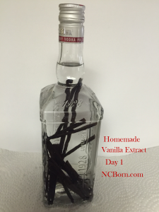homemade vanilla extract day 1