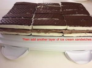 Ice Cream Cake 3