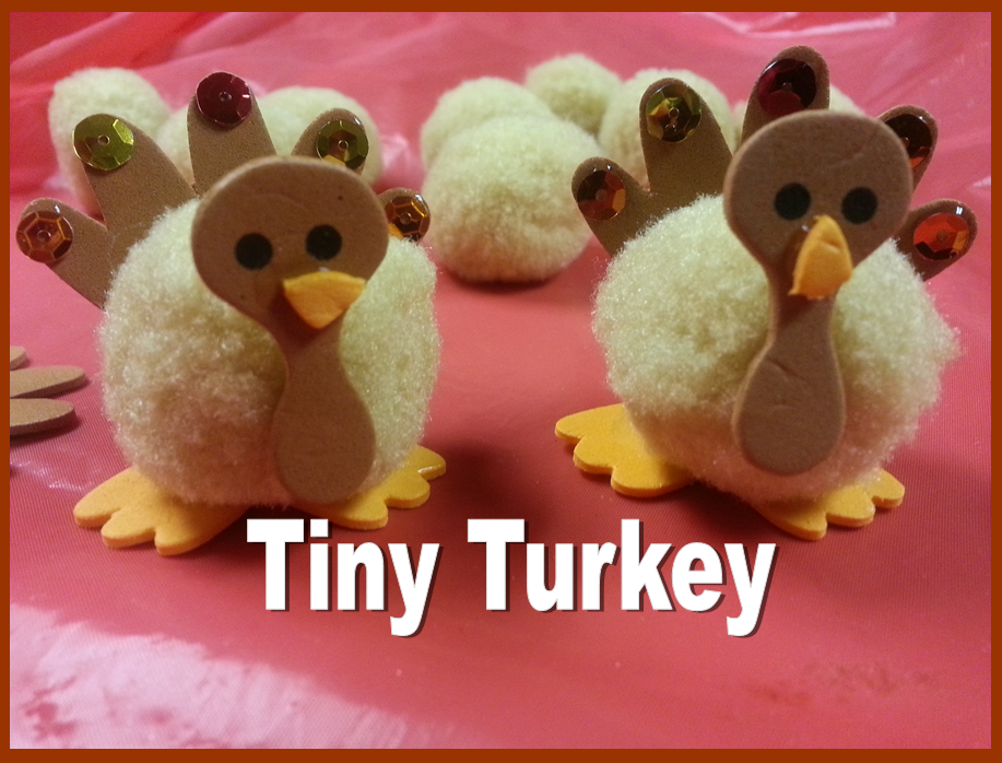 tiny turkey instructions pic for my place
